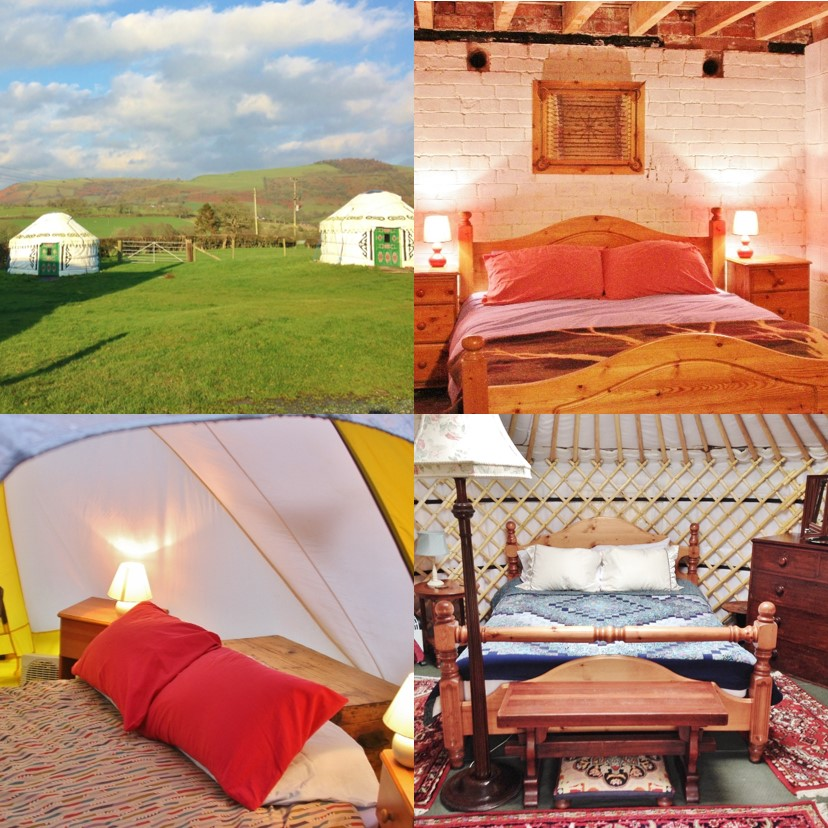 Luxury yurts, stable and dome tent.