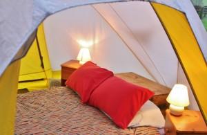 Big Yellow Tent