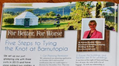 Tying the knot at Barnutopia article headline