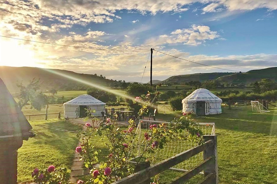 The yurt field on a summer evening.