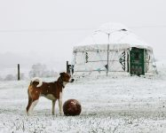 The 5 Ws of Winter Glamping at Barnutopia in Rural Shropshire