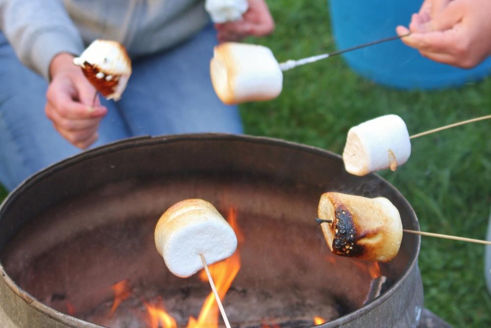 Toasting marshmallows around the campfire at Barnutopia