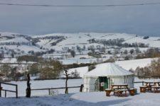 Winter snow at Barnutopia