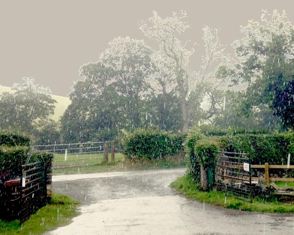 Sunny rainy day at Barnutopia