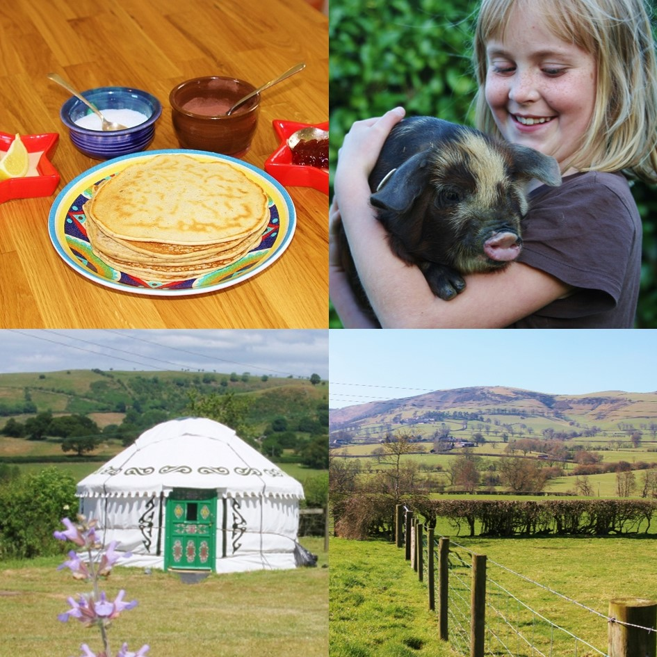 Yurt camping with pancakes, pigs, peace and tranquility.