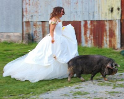 Farm wedding at Barnutopia