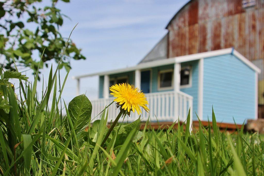 39 reasons: Ranch house Ray