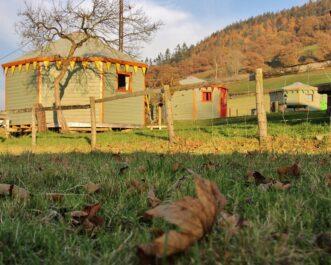 Wooden octayurts at Barnutopia