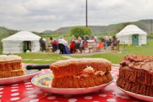 Homemade cakes on the yurt field