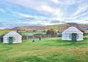 Mongolian yurts at Barnutopia, Oswestry, Shropshire
